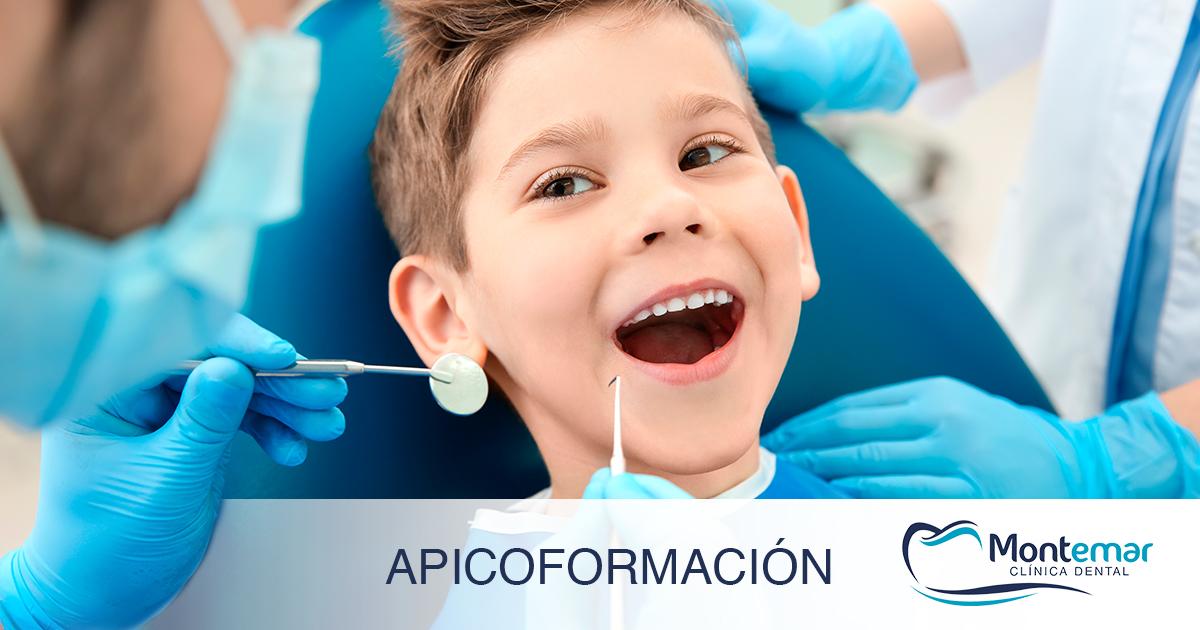 apicoformación